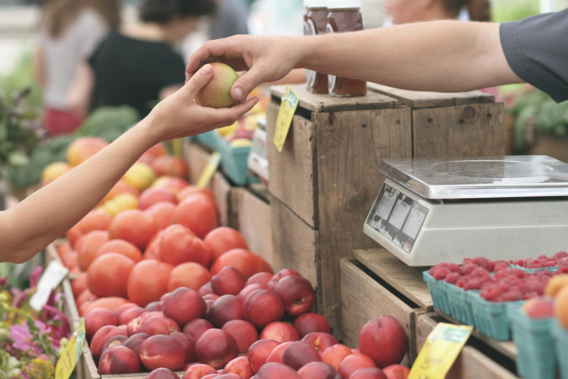 Imagen de mercado para ilustrar La Recova de Santa Cruz